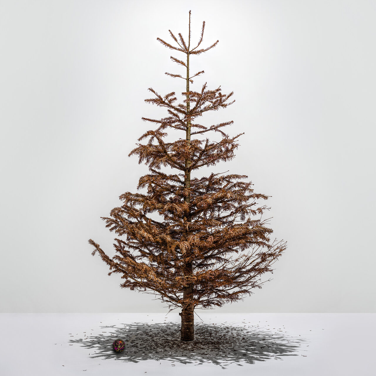 Covid Christmas 2020
